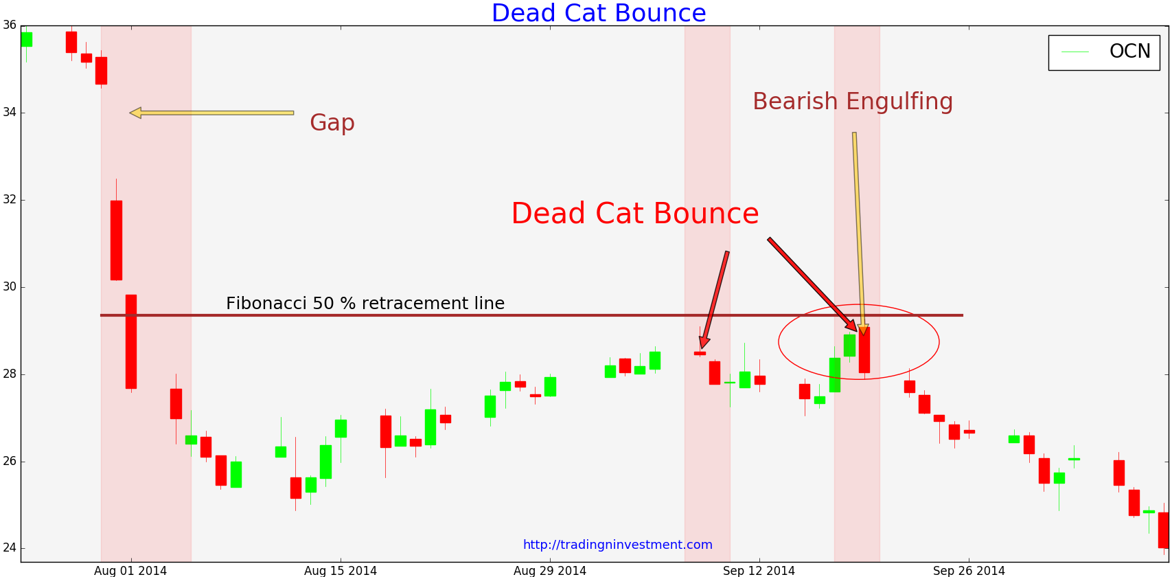 Dead Cat Bounce Video